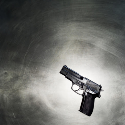 Drawn still life gun File photo Guns Malema at