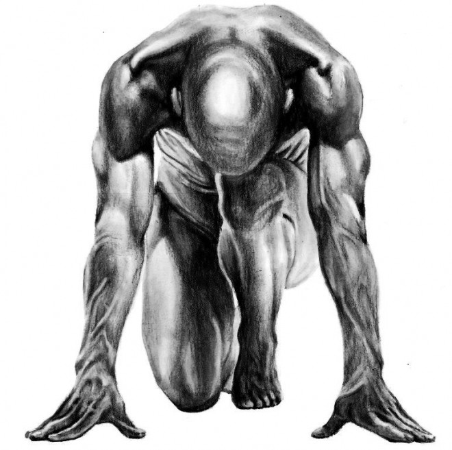 Drawn still life human Tutuorial by anatomy Anatomy best