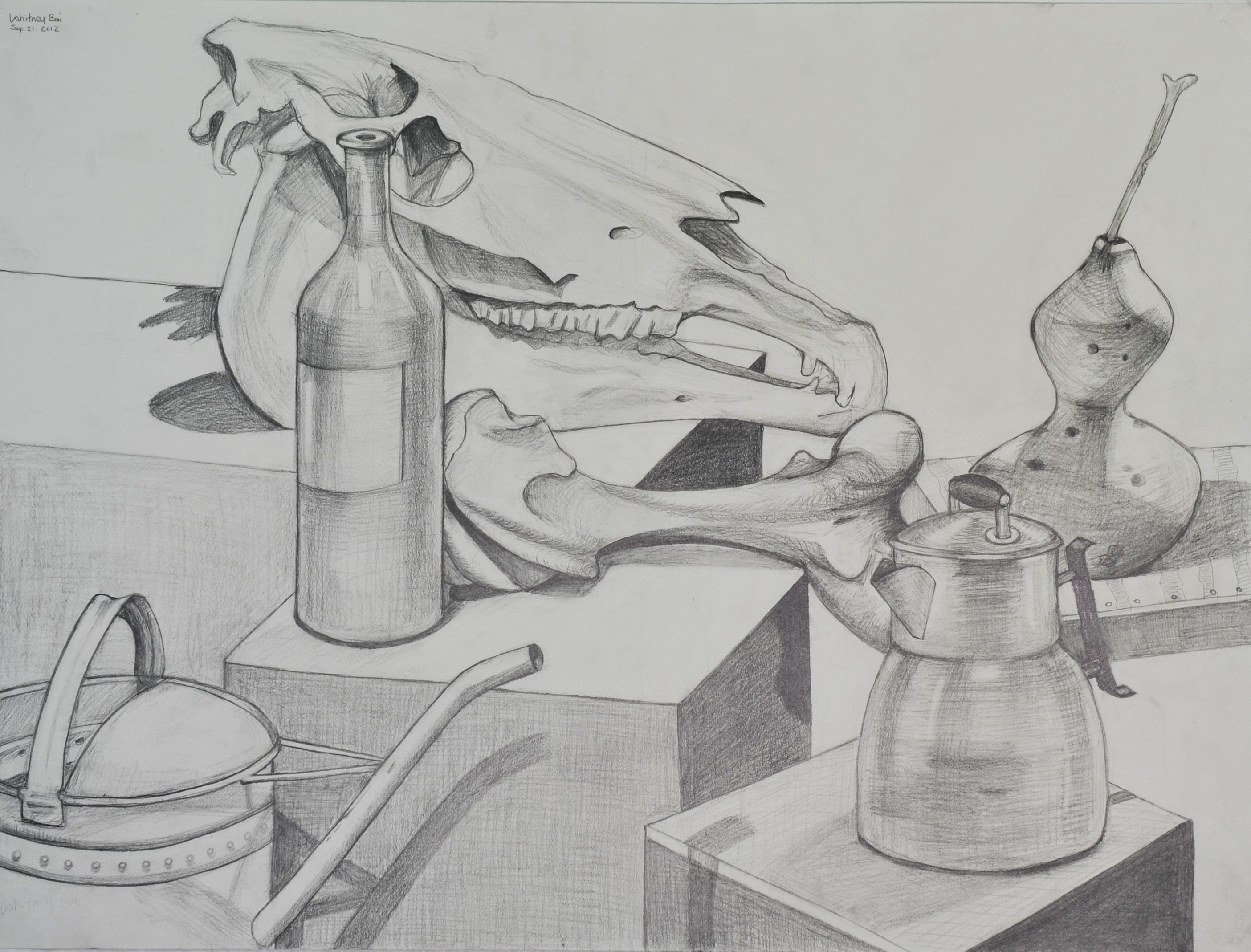 Drawn still life organic Still Drawing Still bai Life