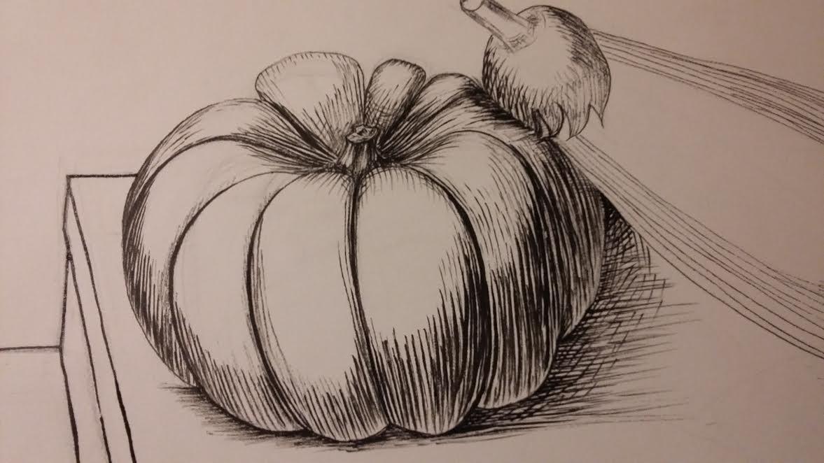 Drawn still life pumpkin Only so confident am pumpkin's