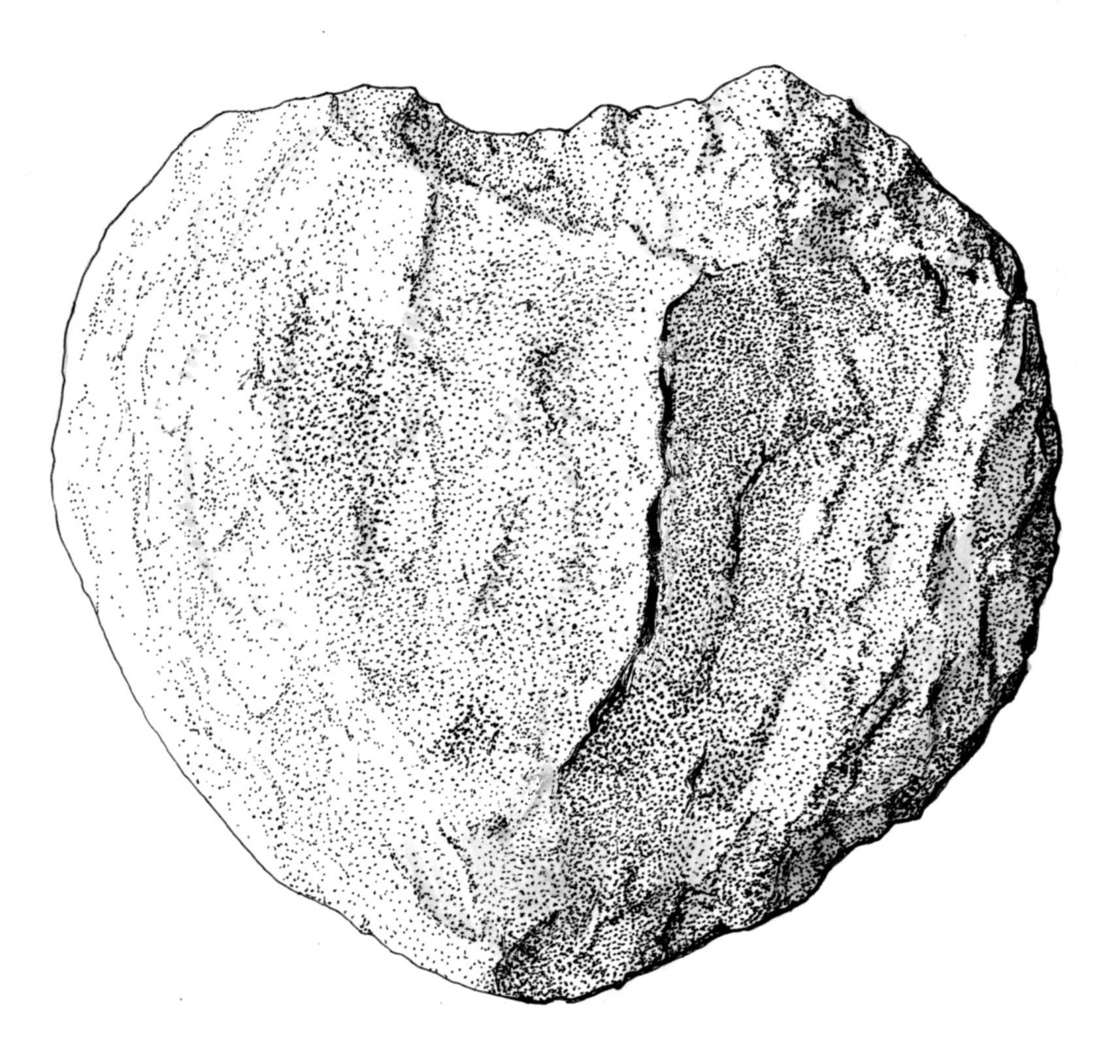 Drawn stone  Stone Drawing Rock
