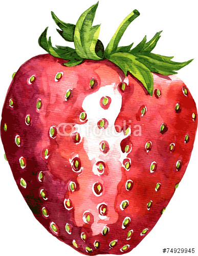 Drawn strawberry strawberry leaf I Search Search Google strawberry