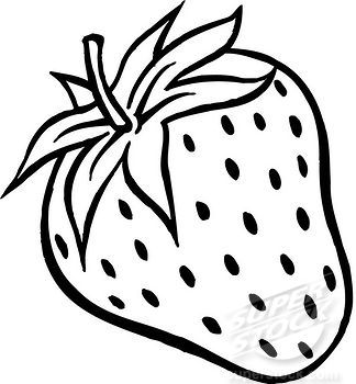 Drawn strawberry strawberry leaf Stock white plump a A