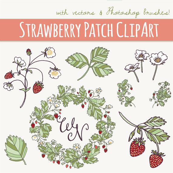 Berry clipart flower // Blossoms Photoshop ART: Fruit