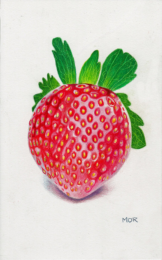 Drawn strawberry color pencil Strawberry drawing colored on on