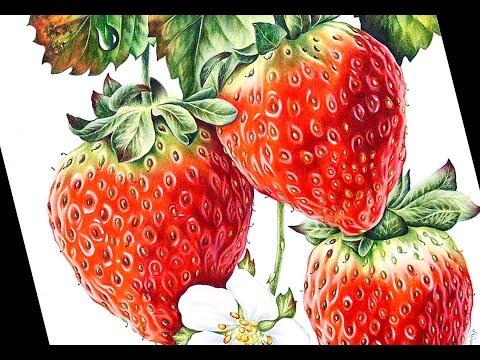 Drawn strawberry color pencil COLORED Tutorial: COLORED PENCIL Strawberries