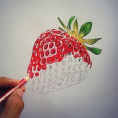 Drawn strawberry realistic Realistic Jess pencil by strawberry