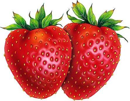 Drawn strawberry strawberry fruit Strawberry Strawberry  Pinterest Theme