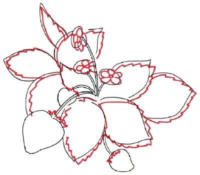 Drawn strawberry strawberry leaf How Strawberry HowStuffWorks Jagged How