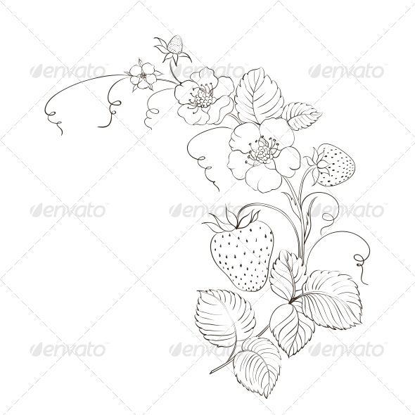 Drawn strawberry strawberry plant #1