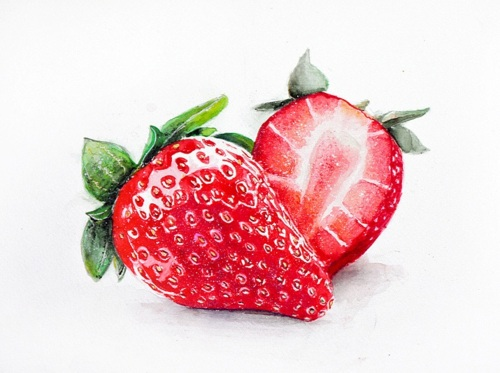 Drawn strawberry watercolor Painting Strawberry by art art