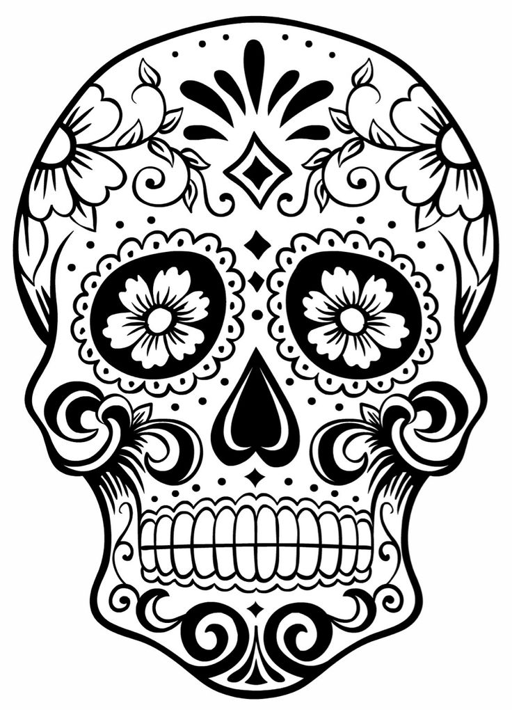 Drawn sugar skull skeleton head Coloring page coolest Skull