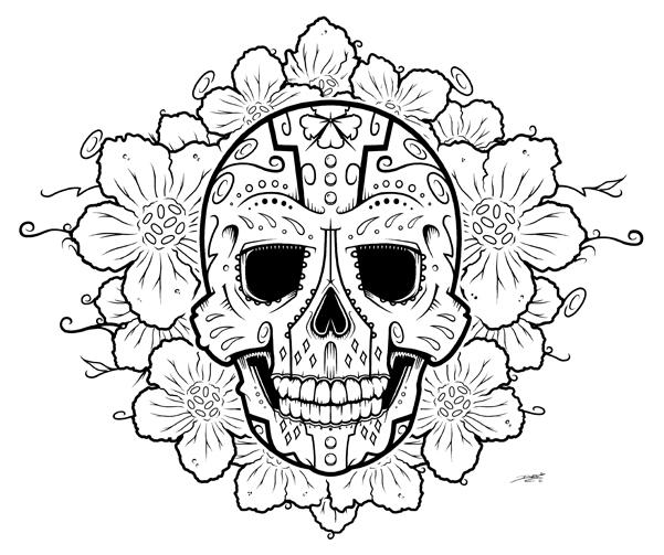 Drawn sugar skull scull Skull Sugar Sugar Realistic Pencil