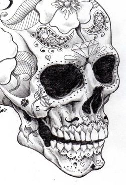 Drawn sugar skull skeleton head Skull drawing about Sugar 265