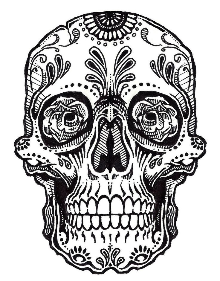 Ssckull clipart drawn About on Sugar Pinterest