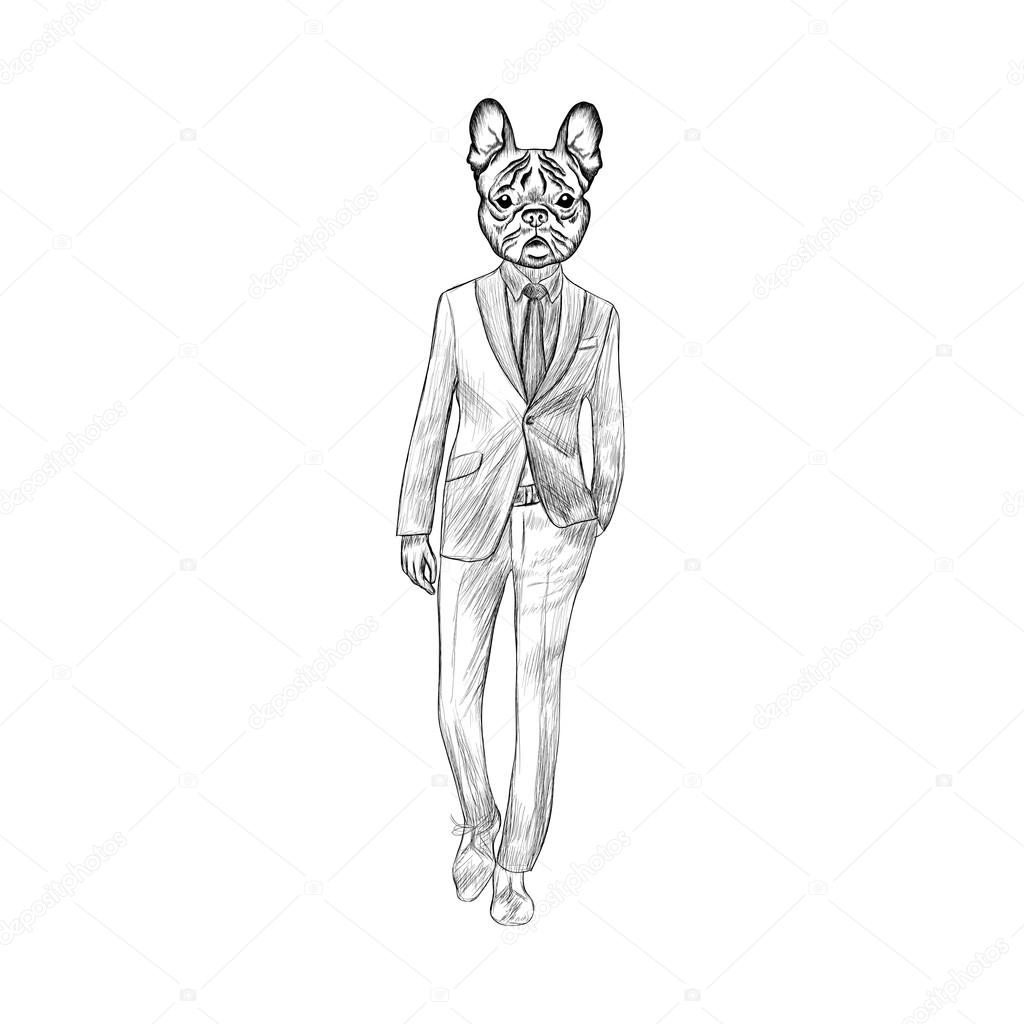 Drawn suit Drawn of dog French vector
