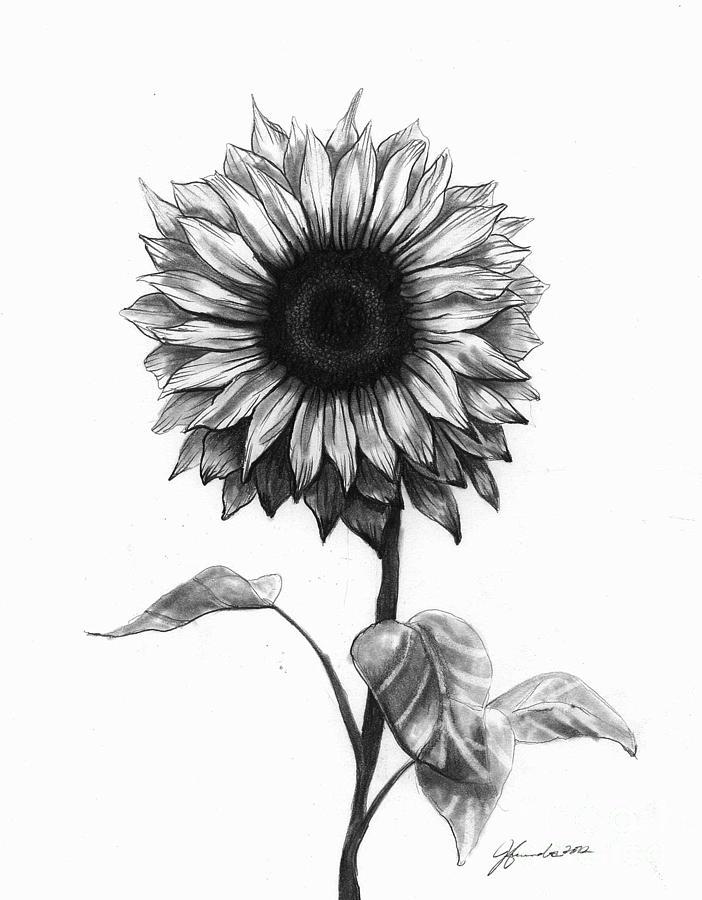 Drawn sunflower Love Best Sunshine Sunshine ideas