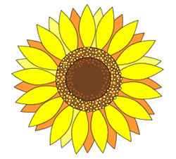 Drawn sunflower To Draw How  Sunflowers