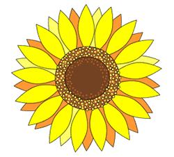 Drawn sunflower To Draw How  Sunflowers