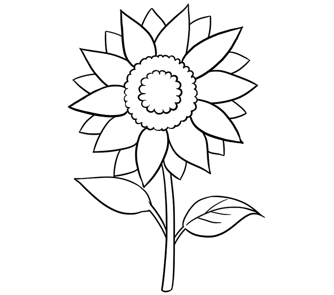 Drawn amd sunflower Easy Step 15 Guides a