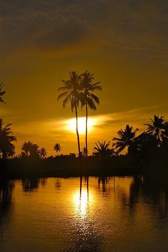 Drawn sunrise kerala scenery Backwater best Pinterest Kerala images
