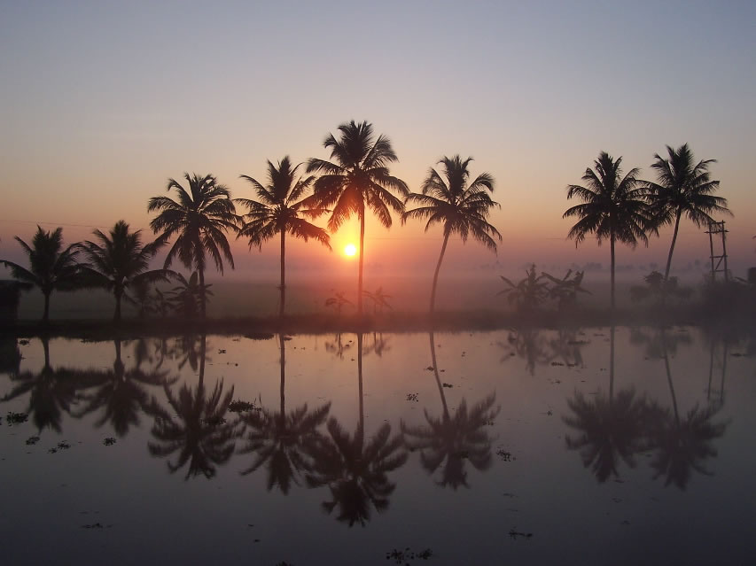 Drawn sunrise kerala scenery Of Backwaters  t the
