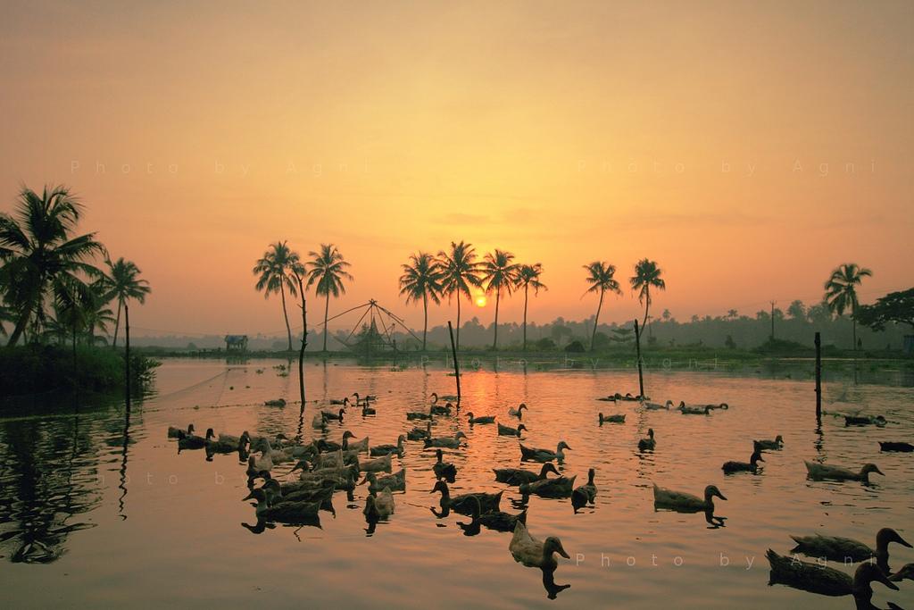 Drawn sunrise kerala scenery Kr/p/dY2dGL Kerala and sunrise https://flic