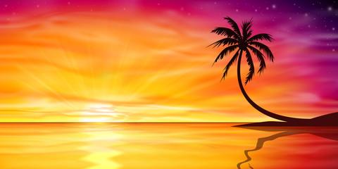 Drawn sunrise palm tree With Tree Search photos Sunrise