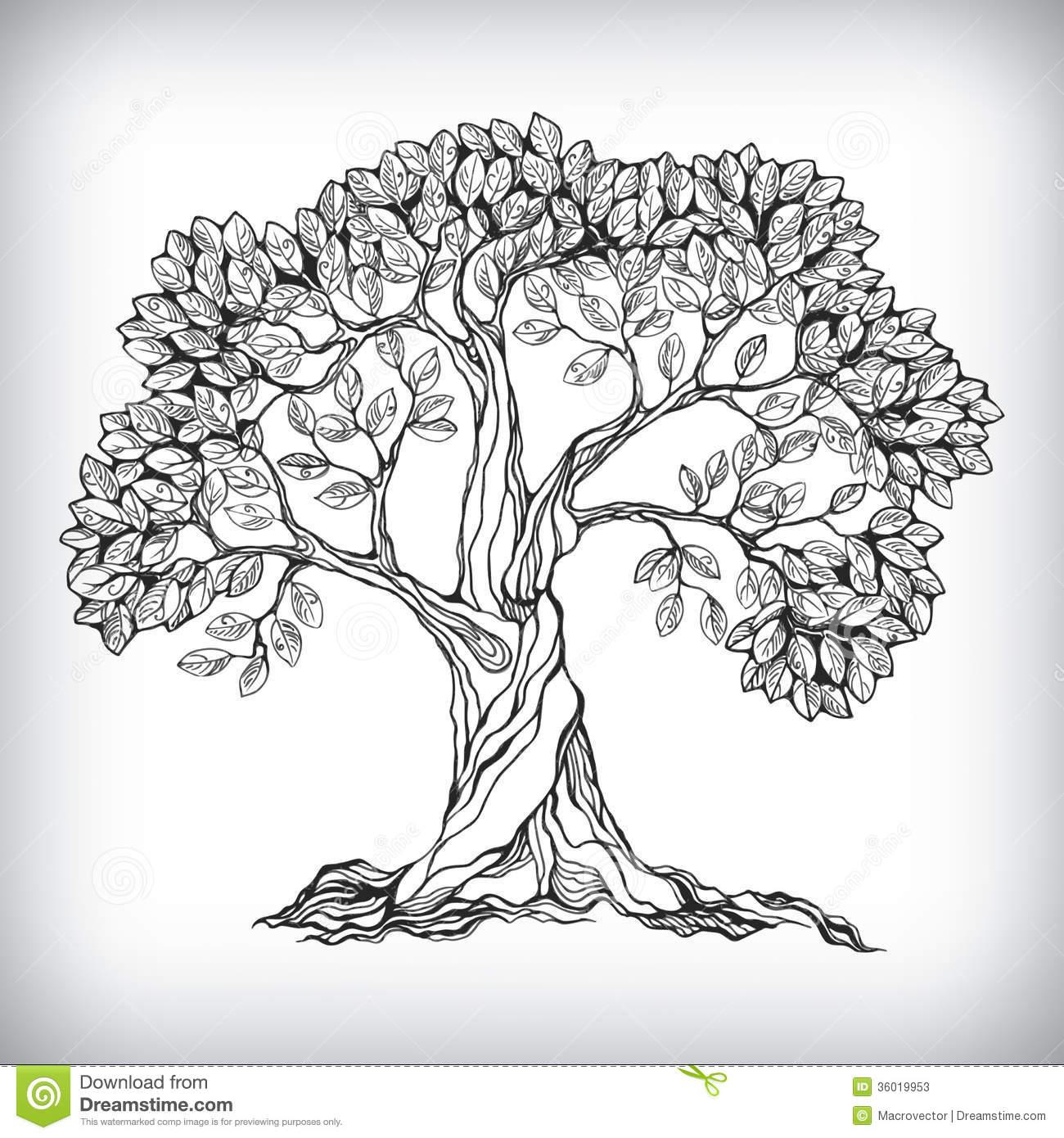 Drawn symbol drawing Stock Hand Tree Tree From