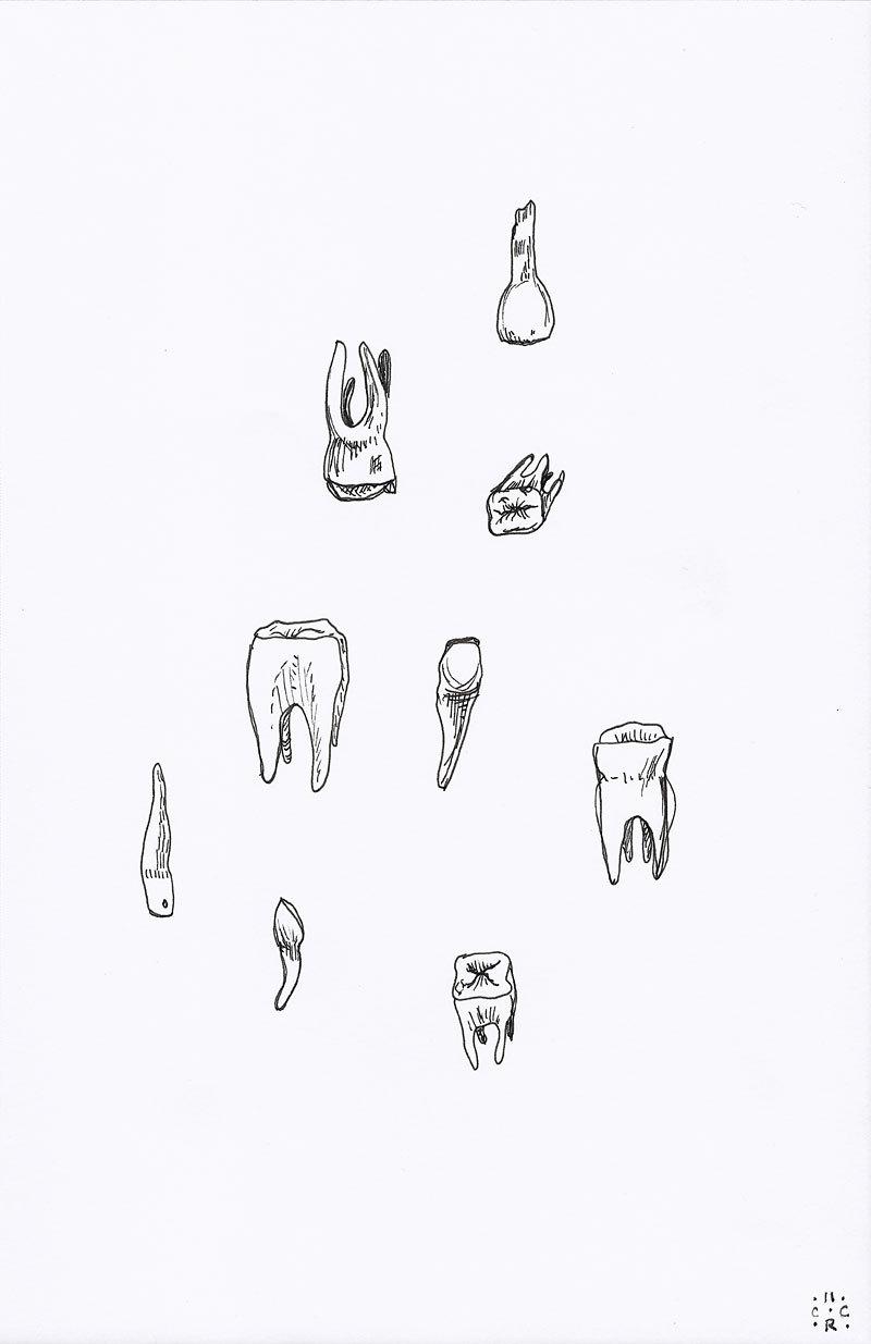 Drawn teeth human White drawing black molars Teeth
