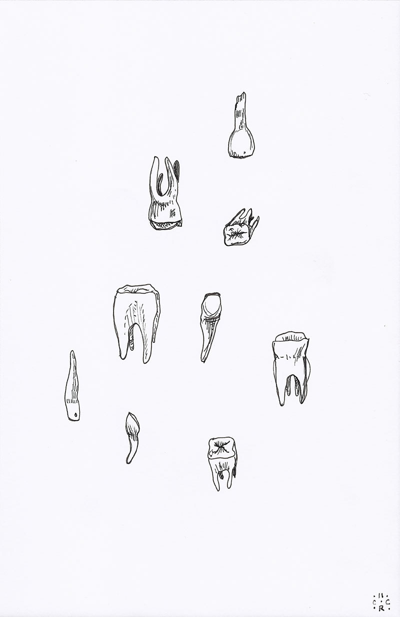 Drawn teeth human White drawing drawing · teeth
