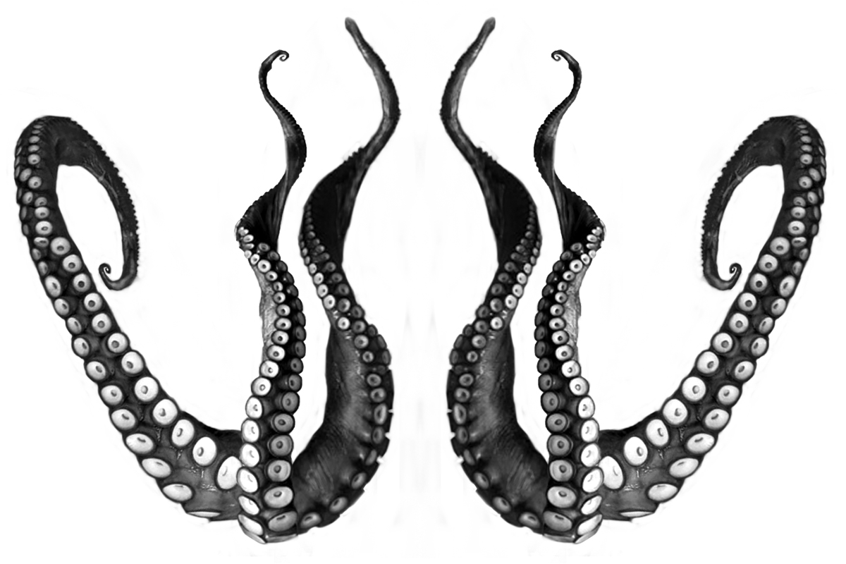 Tentacle clipart vector #19  Illustration A Free