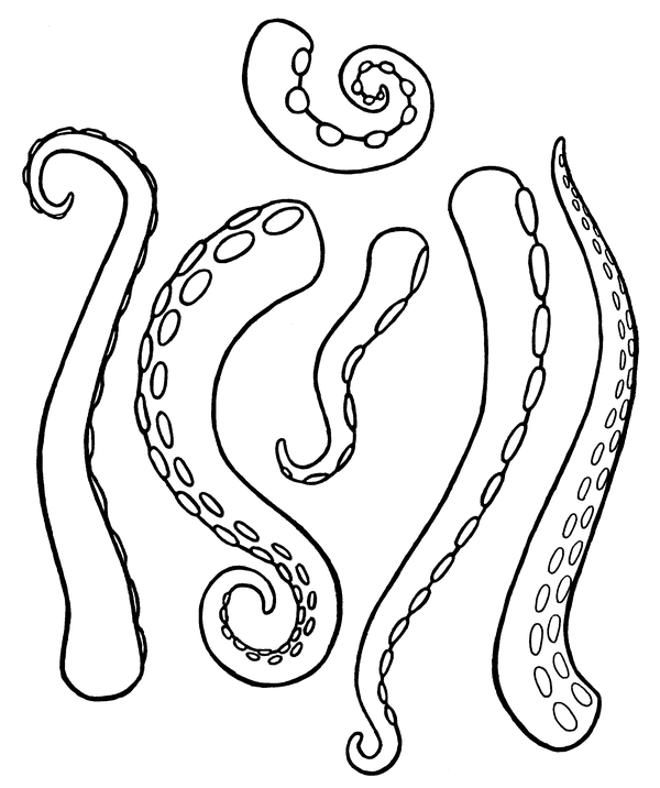 Tentacle clipart vector With DeviantArt by on I