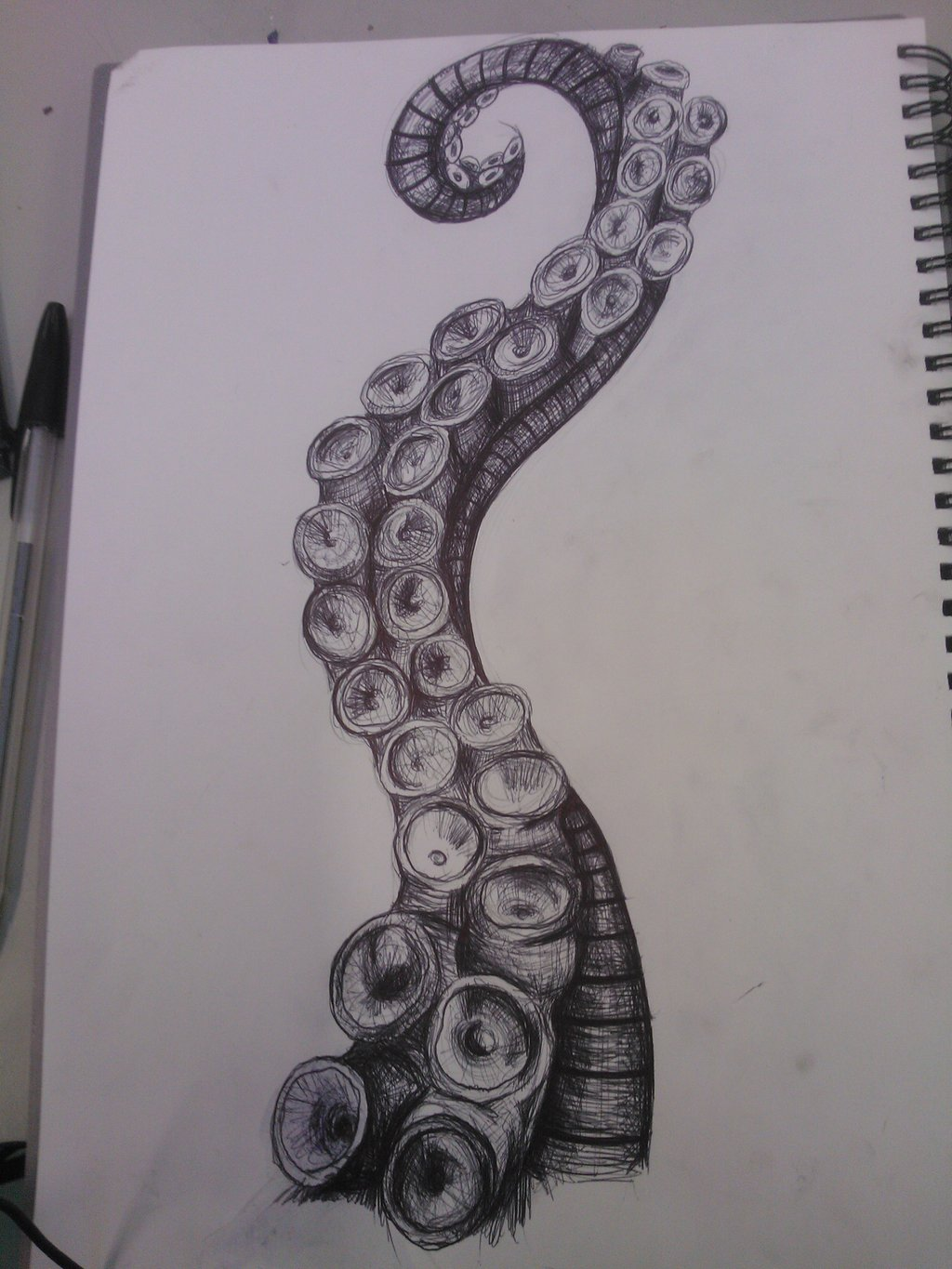 Drawn squid tentacle By deviantart com Tentacle Octopus