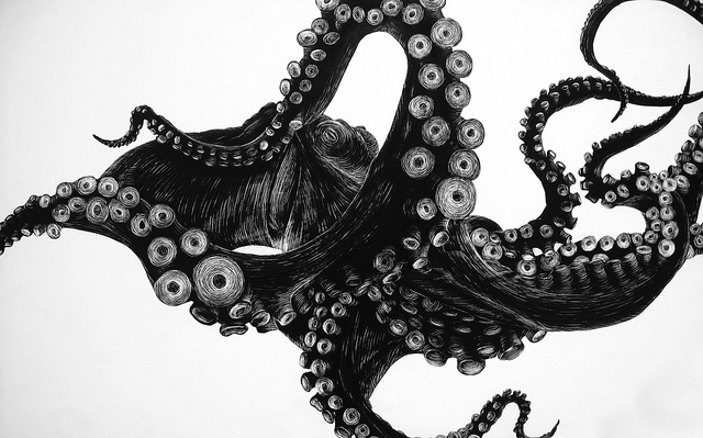 Drawn tentacle Octopus photo#2 Illustration tentacles Tentacles
