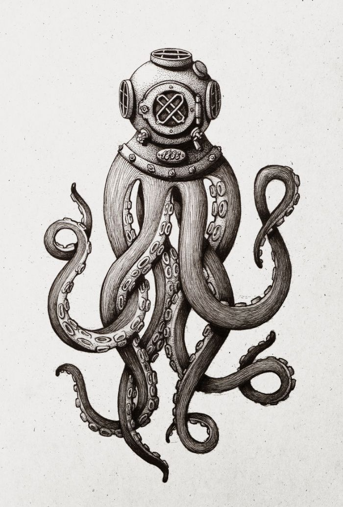 Drawn tentacle squid Print the best images Art