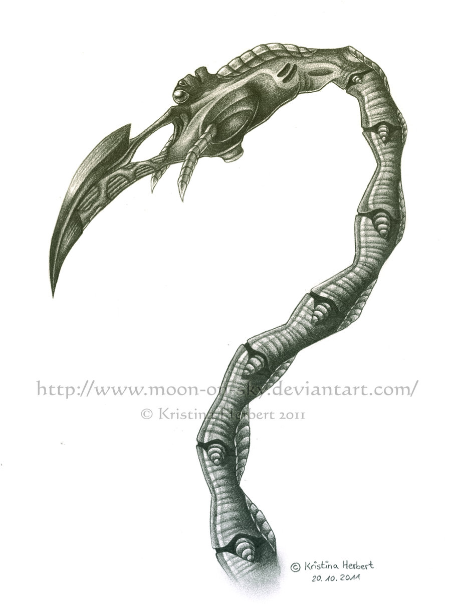 Drawn tentacle traditional By Tentacle Source Tentacle MoonyWings