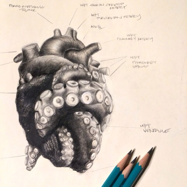 Drawn tentacle traditional BΩDΨ (386×604) ΔRT heart jpg