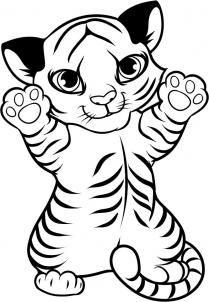 Tigres clipart baby cheetah #5