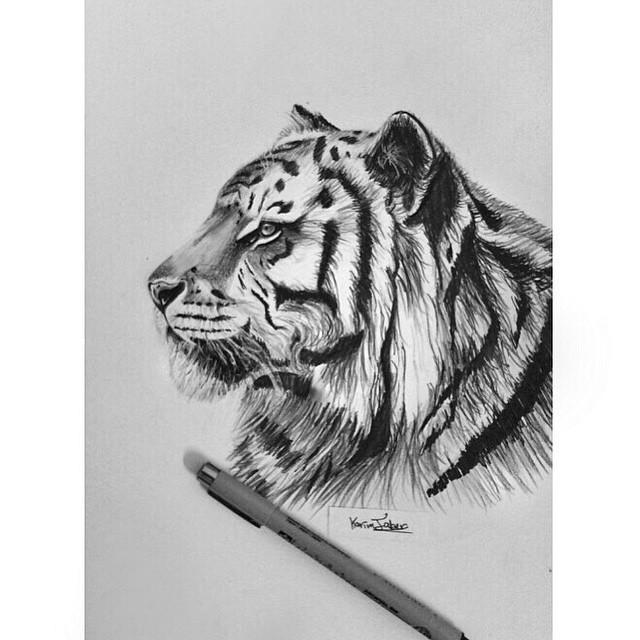 Drawn tigres profile Sketchbook #artist tiger on #art