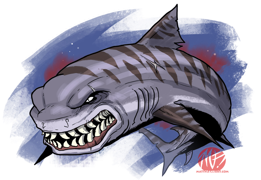 Drawn tiger shark #6