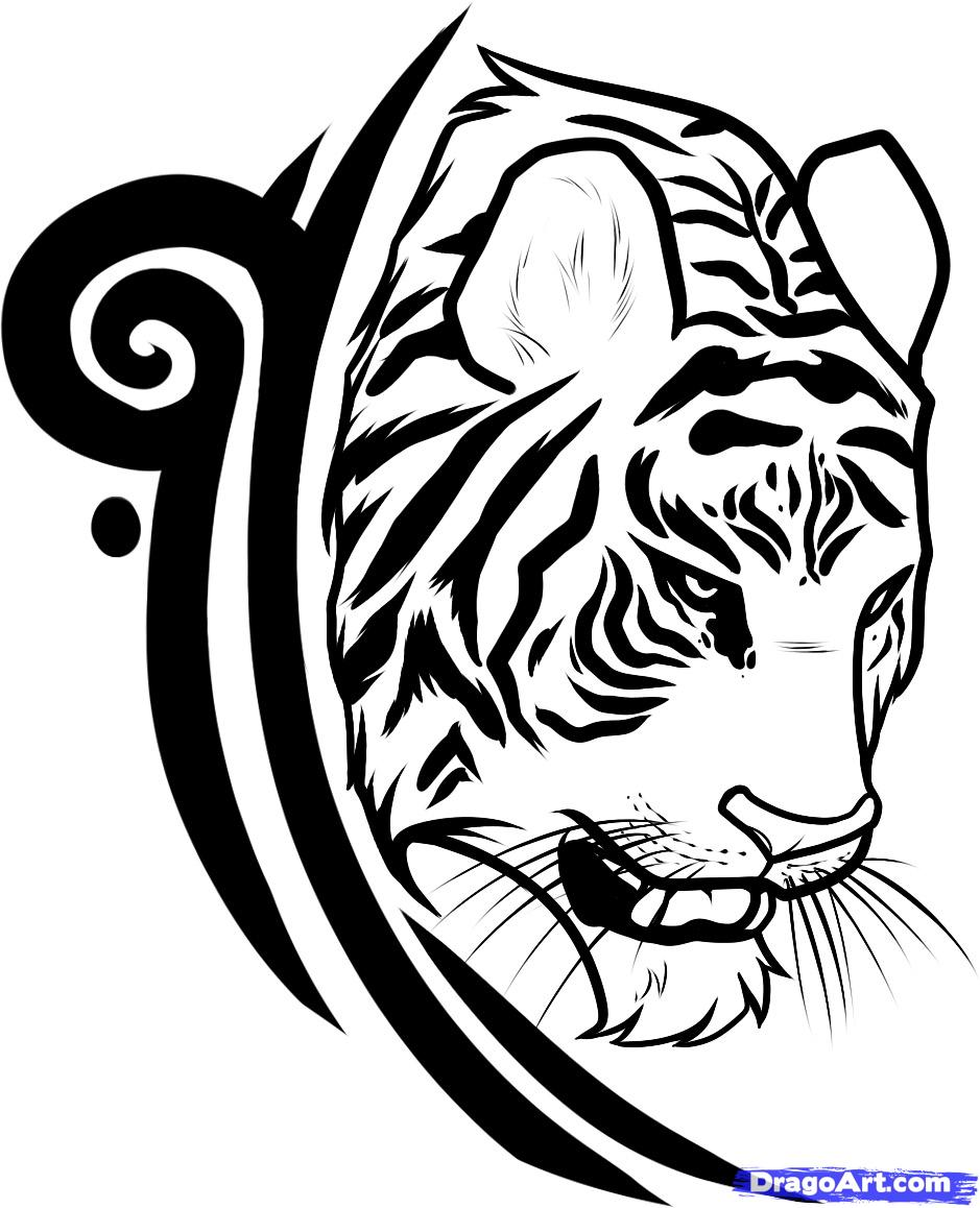 Drawn tigres logo  Design a Tattoo Step