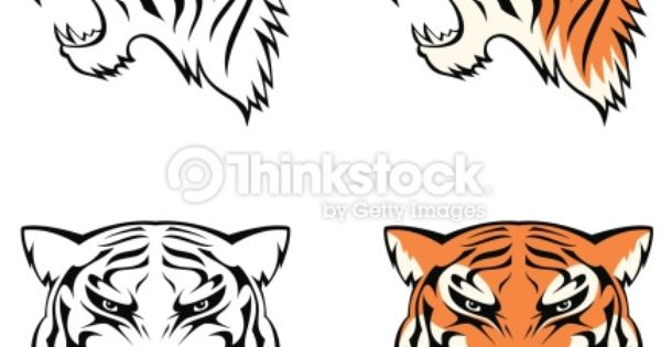 Drawn tigres profile To a view us of