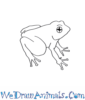 Drawn toad curved  How to Draw Rose's