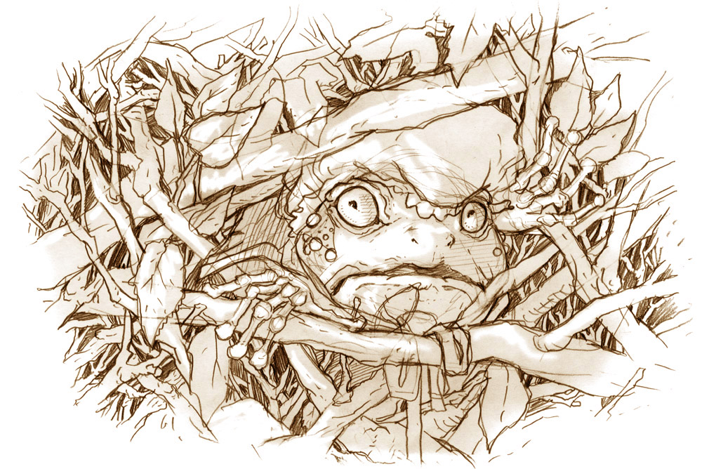 Drawn toad one point Pencil 2016 Blog: re to