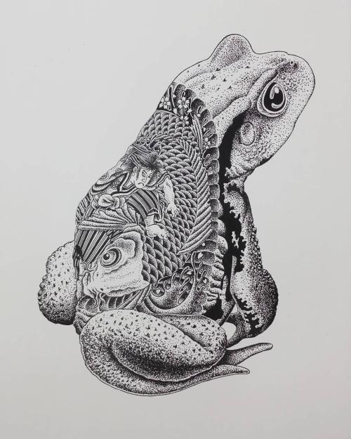 Drawn toad one point Susumu toad artist Artist: Tumblr