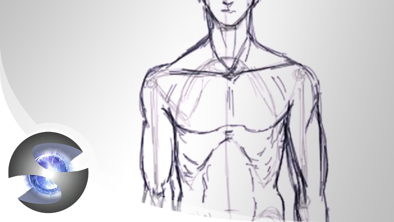 Drawn todies Bodies Drawing YouTube Drawing Bodies