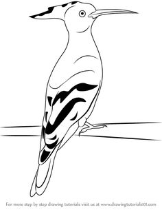 Drawn todies 16 year #8