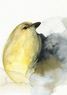 "Drawn todies fast ~ mésange Bird Pinterest ""Hold"