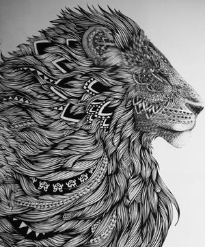 Drawn todies lion DrawingLion best and o'pry Inspire